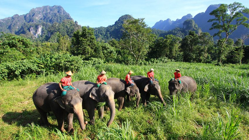 Phuket & Elephant Hills Jungle Safari May 2018
