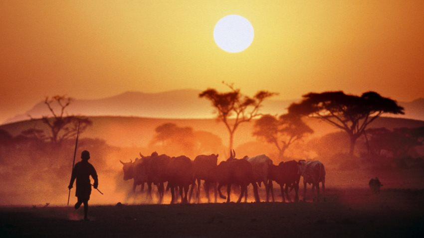 Kenya Classic 7 Day Safari